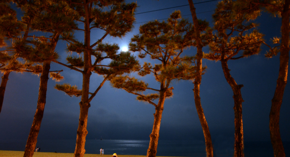 Haeundae-Beach-at-Night-1