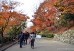 Kiyomizudera-Autumn-Colours-view